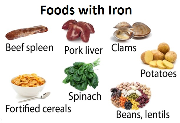 Very High Iron Rich Foods